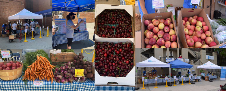 Collage of 2020 Farm Stands